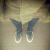 dani_albion