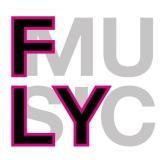 flymusic.jpg