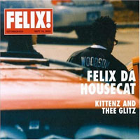 felix_housecat_kittenz