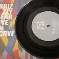grizzlybear_vinilo