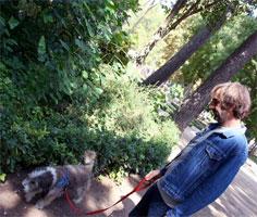 pascual-perro-cagando