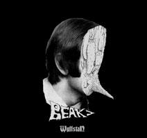 beak-wulfstan