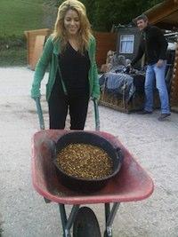 Shakira carretilla mierda