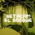 betacam-bosque