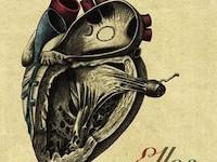 ellos-cardiopatia-severa