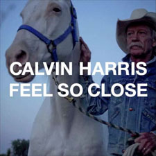 calvin-feel