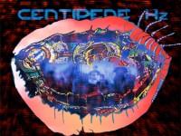 centipede-hz