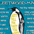 fleetwood-tributo