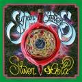 sufjan-silver