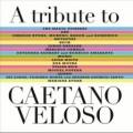 Beck-Caetano-Veloso