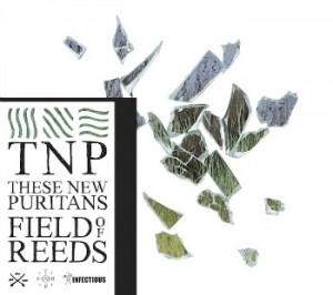 fieldreeds