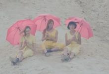 paraguasrosas