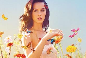 Katy Perry se cae del escenario… sobre un fan