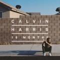 calvin-18months