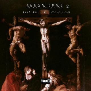ADROMICFMS2