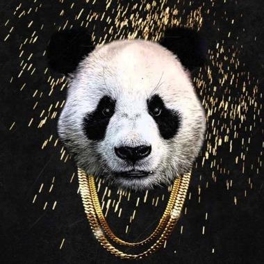 [Imagen: panda-desiigner.jpg]