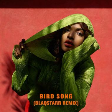 m.i.a. bird song
