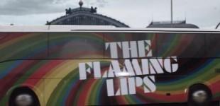 theflaminglips